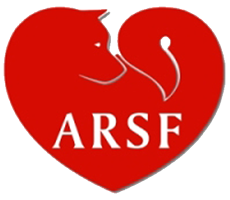 Akita Rescue Society of Florida
