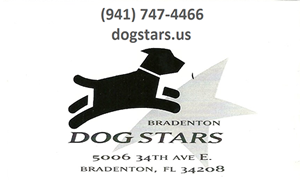Dog Stars Bradenton, FL
