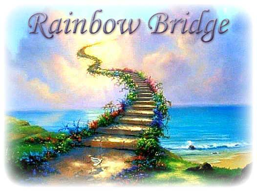 Rainbow Bridge Photo